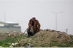 Người Kurd phát động 'trận đánh cuối cùng' chống khủng bố IS tại Syria