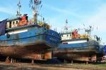 Kỷ luật hàng loạt sếp đăng kiểm vụ tàu cá 20 tỷ đồng hư hỏng