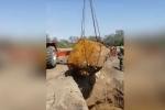 Phát hiện thiên thạch khổng lồ nặng hơn 30 tấn ở Argentina