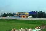 Cây xăng 'mọc' giữa cánh đồng lúa ở Thanh Hóa