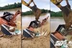 Cận cảnh dìm máy múc hàng trăm triệu đồng xuống chân đê ngăn nước lũ ở Thanh Hóa