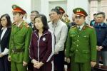 Phúc thẩm vụ tham ô tài sản tại PVP Land: Trịnh Xuân Thanh rút đơn kháng cáo