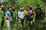 Bắt kẻ cầm đầu vụ hạ độc hơn 10 ha rừng thông 20 năm tuổi