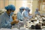 22 loại thuốc, biệt dược chữa ung thư được đấu thầu, giảm 590 tỷ đồng so với năm ngoái