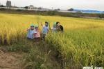 Cộng đồng người Triều Tiên ở Nhật Bản sống thế nào?