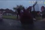 Clip: Cảnh sát liều mình nhảy xuống hồ nước đầy cá sấu, rắn độc để cứu người