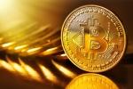 Cách kiếm tiền giữa 'tâm bão' Bitcoin mất giá, sập sàn Bitconnect
