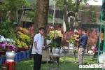 Ảnh: Sài Gòn rực rỡ sắc hoa, cây cảnh ngày cận Tết