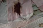 Sự im lặng đáng sợ trong nghi án bé gái lớp 1 bị xâm hại ngay tại trường