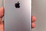 Bao nhiêu chiếc iPhone sẽ được Apple cho ra mắt năm 2016?