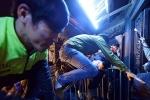 Lễ khai ấn đền Trần bị biến tướng, thành nơi kinh doanh 'siêu lợi nhuận'