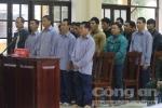 Phá rừng pơmu chấn động Quảng Nam: Xét xử Phó đồn Biên phòng cùng 20 bị cáo