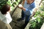 Ro nghi van Thu Trang ngoai tinh, cai nhau voi Tien Luat gay gat hinh anh 1
