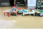 Lũ về đột ngột, dân Nha Trang không kịp trở tay