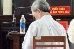 Bị cáo dâm ô trẻ em được hưởng án treo: Tòa Cấp cao xem xét lại