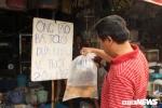 Nhiều người chơi sang mua cá Koi Nhật Bản giá gần triệu đồng cúng ông Công ông Táo