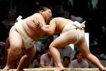 Cái giá nghiệt ngã phải trả của những cậu nhóc muốn thành võ sĩ sumo