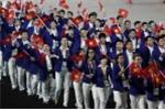 Đoàn thể thao Việt Nam dự SEA Games 2017: Sẽ giảm từ 10 xuống 2 phó đoàn?