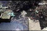 Thanh Hóa: Nhà hàng xả thải thẳng ra biển, dân 'sống không bằng chết' vì ô nhiễm