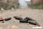 Nổ lớn ở Bắc Ninh, 10 người thương vong: Khởi tố chủ cơ sở phế liệu