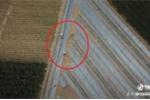 Thấy chiếc flycam bay lơ lửng trên đầu, 3 bác nông dân lập tức bỏ chạy
