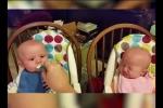 Bé sinh đôi khóc nức nở, tranh nhau ăn bột siêu đáng yêu