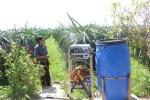 Máy tự phun thuốc bảo vệ thực vật của lão nông giúp tiết kiệm sức người