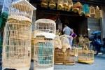 Chiêm ngưỡng những chiếc lồng chim giá hàng chục triệu đồng ở Hà Nội