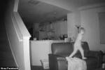 Kiểm tra camera an ninh, bố mẹ ngỡ ngàng khi thấy hành động của con lúc nửa đêm
