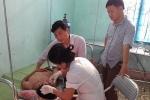 Khởi tố, bắt tạm giam 3 kẻ đánh thầy giáo, học sinh nhập viện ở Nghệ An