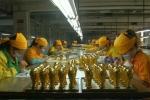 Trung Quốc sản xuất đại trà cúp vàng World Cup
