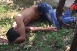 Clip: Say rượu, thanh niên tự châm lửa đốt nhà rồi ra vườn chuối ngủ