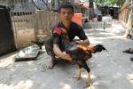 Video: Bên trong trang trại gà chọi tiền tỷ giữa thủ đô