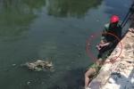 Clip: Cứu cô gái nhảy sông Sét tự tử giữa trưa nắng