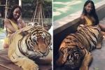 Hoa hậu Chuyển giới vào chuồng hổ, khoe dáng bốc lửa bên chúa sơn lâm