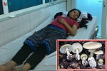Ăn nấm độc, gia đình 4 người nhập viện cấp cứu