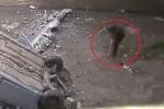 Clip: 'Hóng' tai nạn, người đàn ông ngã lộn cổ khỏi cầu