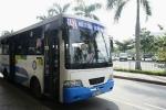 2 chuyến xe buýt miễn phí vé cho khách ra vào Tân Sơn Nhất dịp Tết