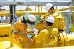 Tổng công ty Khí Việt Nam:  Xếp vị trí thứ 5 trong số các doanh nghiệp có lợi nhuận tốt nhất Việt Nam