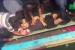 Video: Ngư dân Hải Phòng bị cá mập cắn nát tay