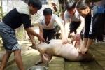 Gia đình tuyển thủ U23 VN nấu lẩu, mổ lợn khao hàng xóm