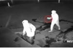 Video: Tên trộm ném thẳng viên gạch vào đầu đồng bọn