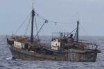 Chiếc tàu cá bí ẩn toàn 'trinh nữ' của Triều Tiên