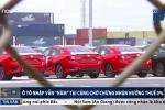 Video: Hàng nghìn ô tô nhập vẫn nằm cảng chờ hưởng thuế 0%