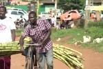 Nữ sinh Uganda ưa chuộng băng vệ sinh làm từ... bã mía