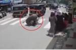 Clip: Trâu 'điên' hung hăng vật ngã phụ nữ trên phố