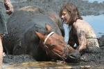 Chùm ảnh rơi nước mắt về tình bạn giữa người và ngựa