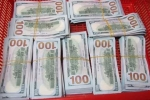Bắt giữ người phụ nữ giấu 90.000 USD trong vali
