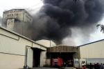 Công ty sản xuất thức ăn chăn nuôi cháy lớn chiều cuối tuần