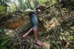 Video: Người đàn ông chân trần trèo vách đá lấy mật ong rừng ở Sơn La